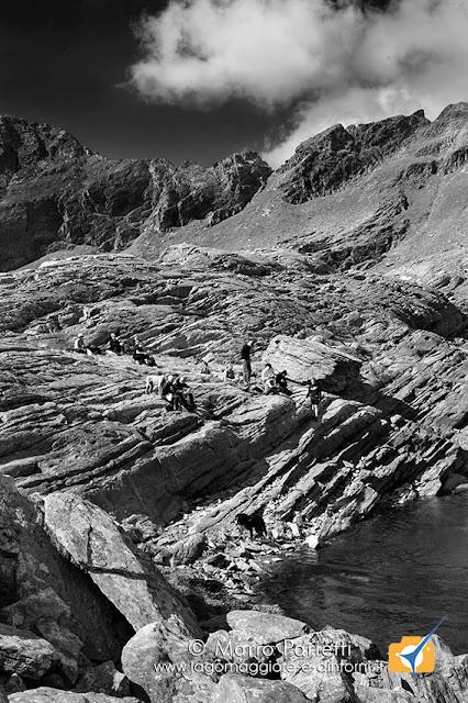 Lago di Paione Superiore in bianco e nero