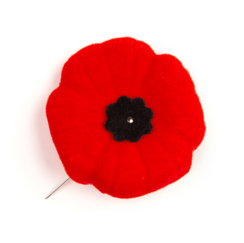 Constantly Moving the Bookmark: Why Do We Wear Poppies in
