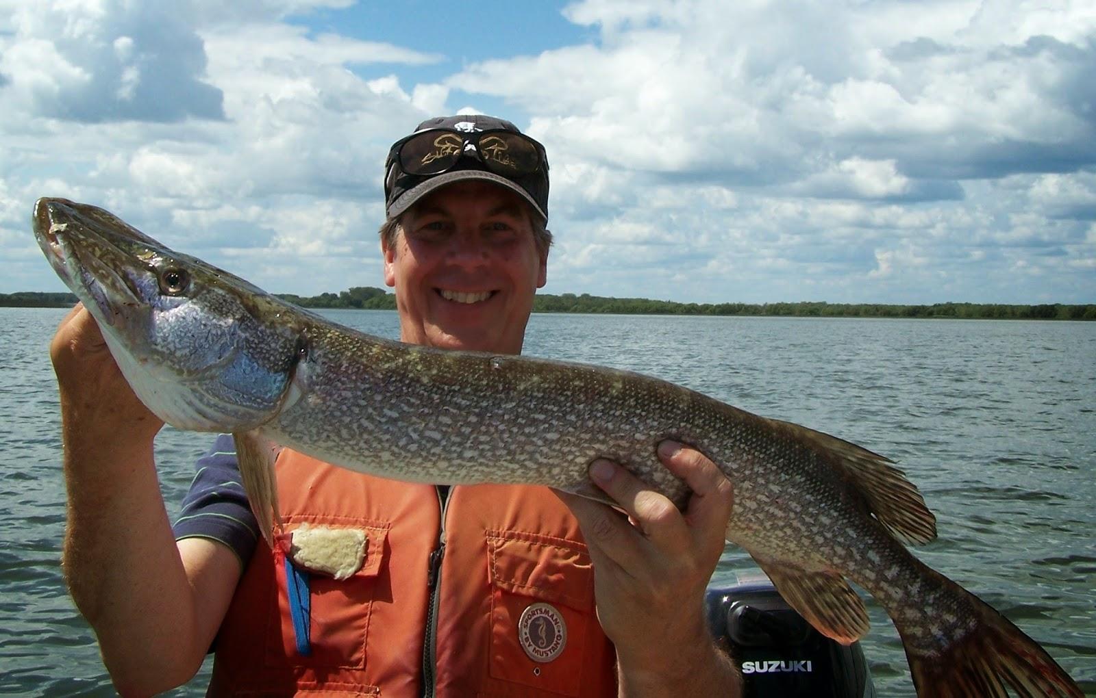 pêche Lac Saint-Pierre, Lac St-Pierre, Pêche Roger Gladu, Pêche brochet, Daniel Lefaivre, pêche au Québec,