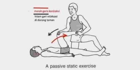 Latihan Fleksibilitas Menggunakan PNF