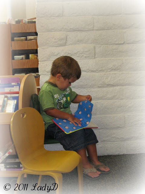 Grandson Reading Books: LadyD Books