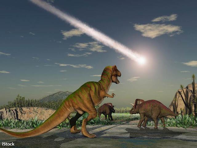 العلماء يَحُلُّونَ لغز انقراض الديناصورات, لماذا انقرضت الديناصورات, ما هو سبب انقراض الديناصورات, ما  سبب انقراض الديناصورات, سبب انقراض الديناصورات, انقراض الديناصورات