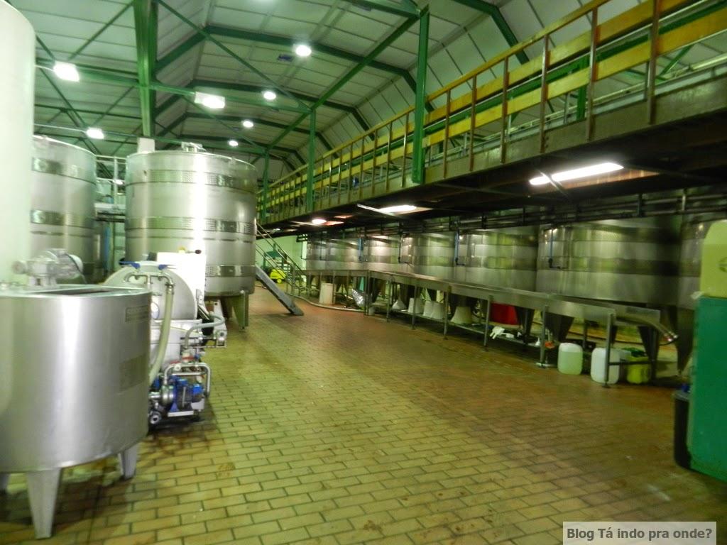 vinícola Groot Constantia