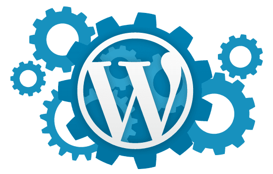 Top 5 Themes for WordPress