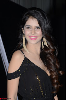 Kashish Vohra at Rogue Movie Audio Launch ~  (16).JPG