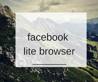 facebook lite browser