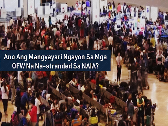 Thousands of overseas Filipino workers (OFW) and other passengers had been stranded at the Ninoy Aquino International Airport (NAIA) due to the excursion of a Xiamen Air which slipped off and got stuck at the runway and last week. Luckily, all passengers and crews were safely evacuated. However, the incident affects all the passengers at the NAIA because the said incident forced all other airlines to cancel their flights. The result, thousands of travelers were stranded for days without food and a decent place to stay.        Advertisement  The plane was already out of the runway but the passengers including thousands of OFWs who were about to return to their workplace were still staying there like evacuees lingering all over the airport without any clear assurance that their flights may be rebooked or refunded. They were not given any food or hotel accommodations by their airlines.      Under the passenger Bill Of Rights, in case of flight cancellation, the airline must provide the passengers with sufficient refreshments and meals, hotel accommodations, free call/text and internet service, transportation from the airport to the hotel, and first aid if necessary. The airline company also has to rebook the flight or endorse the passenger to another airline company at no extra cost. If the passenger decides not to fly anymore, the airline company should reimburse the airfare including taxes and surcharges.    Ads  As of this writing, none of these benefits was given to any stranded passengers. The OFWs already missed the designated date when they supposed to be reporting for work. Some of them has chosen to go home instead of staying at the crowded NAIA.     The two pilots of Xiamen Air appeared at the CAAP investigation and explained that the plane did not land successfully on their first approach on the runway due to poor vision in midst of severe rainfall. On their second approach, they made it to the left side of the landing area but it slipped off the concrete runway. The plane has lost its landing front landing gear and one of its engines. MIAA said that the two pilots, which the names were not revealed, were both experts. They drug test also turned out negative while the results of their alcohol test s yet to be released.   Xiamen Air also issued apologies to the affected passenger and promised to extend any possible assistance they could give.    Ads     The Department of Foreign Affairs (DFA) has already instructed the embassies and consulates to extend their assistance to OFWs who had been caught by the incident and were not able to arrive on time to their host country.  Filed under  overseas Filipino workers, Ninoy Aquino International Airport, Xiamen Air,   stranded, travelers, OFW,      Read More: