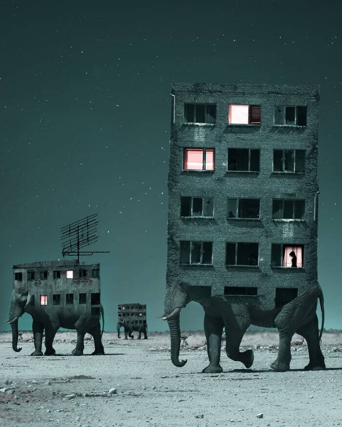 07-Elephant-Apartments-Stalowa-Wola-Surreal-Photos-of-Landscapes-and-Architecture-with-Animals-www-designstack-co