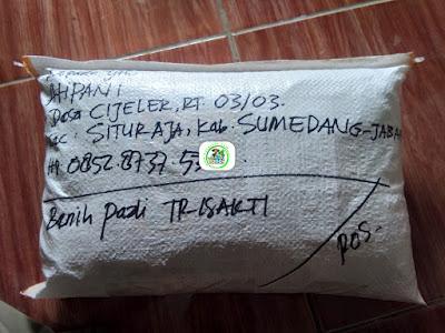 Benih pesanan AHPANI Sumedang, Jabar..   (Sesudah Packing)