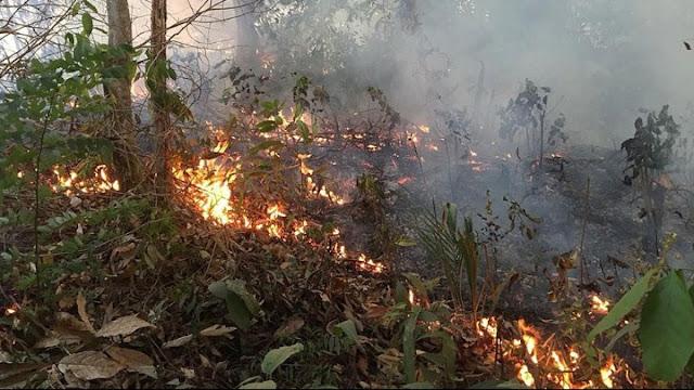 Καίγεται πάλι ο Αμαζόνιος