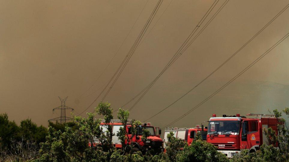Κάηκαν 100 στρέμματα στη Χαλκιδική - Υπό μερικό έλεγχο η πυρκαγιά