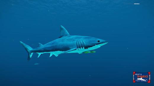 Arma3へサメを追加するMOD