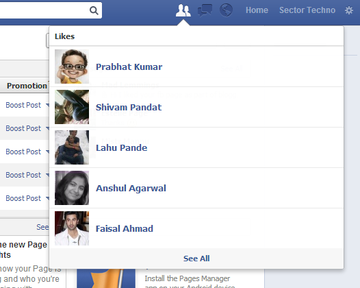 list of new likes on Facebook page