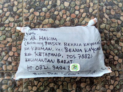 Benih pesana    ILYAS Ketapang, Kalbar.   (Sesudah Packing)