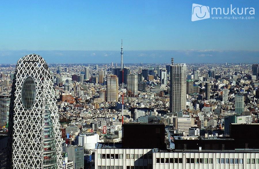 เที่ยวญี่ปุ่นด้วยตัวเอง #7 พาไปชมวิวโตเกียวมุมสูงฟรี ที่ศาลาว่าการกรุงโตเกียว ย่านชินจูกุ