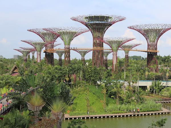 Tempat Wisata Terkenal dan Kuliner yang Harus Kamu Coba Saat ke Singapura