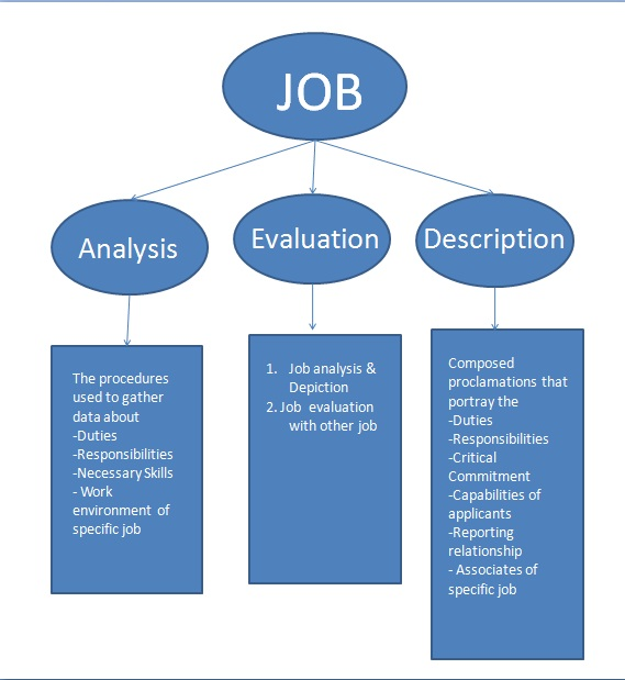 job analysis vs job evaluation essay Compare and contrast the following methods of job evaluations and  compare and contrast the three most common job evaluation  of high quality job analysis the.