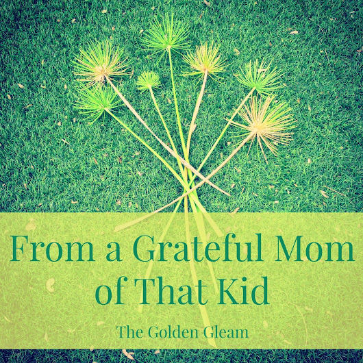 The Golden Gleam: I  am a Mom of That Kid