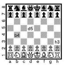 automatic chess board reed switch wiring diagram rh acboard blogspot com diagram chess board setup