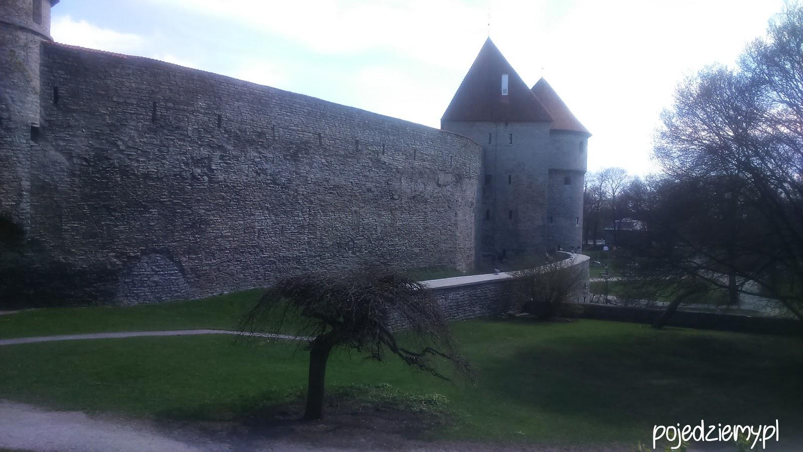 Jeden dzień w Tallinie