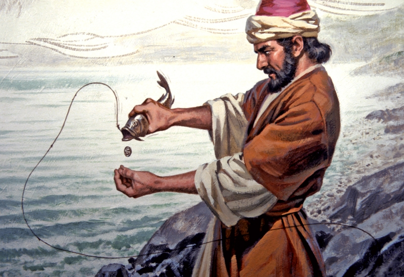 miracles catching a fish with a coin in its mouth