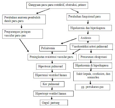 skema patofisiologi kor pulmonal cor pulmonale pulmonary heart disease