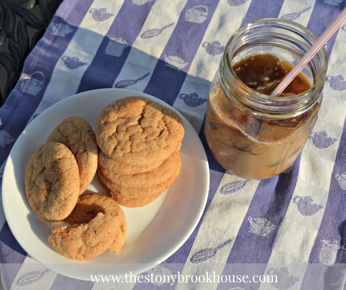 Skinny Iced Coffee with cookies