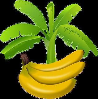 kela khane ke labh ,benifits of banana