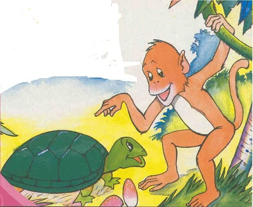 The Monkey & the Turtle