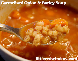 vegan caramelized onion and barley soup