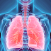 Interstício é o novo órgão humano que pode ajudar a curar o câncer