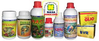 AGEN NASA DI Pinoraya Bengkulu Selatan - TELF 082334020868