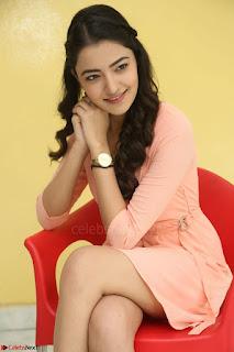 Rukshar Mir in a Peachy Deep Neck Short Dress 086.JPG