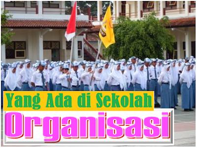 Administrasi Pendidikan Secara Umum Di sekolah/Madrasah