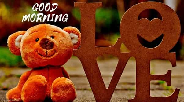 good morning love teddy bear images