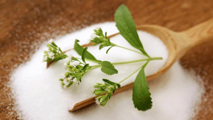 stevia azucar
