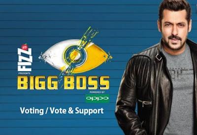 bigg boss 11 vote