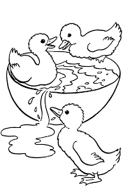 Printable Baby Duck Coloring Pages For Free