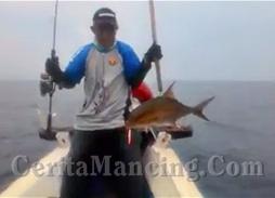 Mancing Jigging Strike Monster Kerisi Bali Dan Amberjack