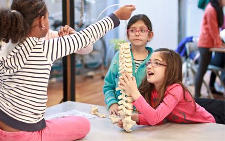 Talleres-infantiles-Museo-Nacional-de-Ciencias-Naturales-Madrid