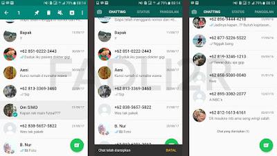 Cara Menyembunyikan Pesan di Whatsapp