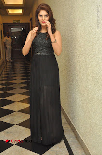 Actress Surabhi Stills in Black Long Dress at turodu Audio Launch  0115.JPG