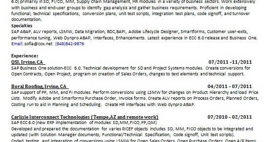 Technical Development For Sd And Project Systems Modules