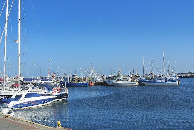 kurty, Polskie Morze, Bałtyk, Władysławowo, port
