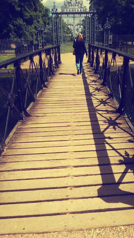 Walk In Anyone's Shadow