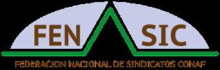Comunicado Sindicato de Trabajadores de CONAF, Región de la Araucanía