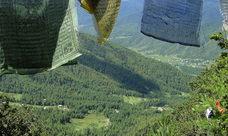 Gambar hutan di Negara Bhutan