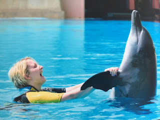 Dolphin Experience Aquaventure