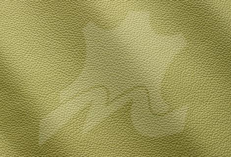 Piele naturala tapiterie canapele Zenith - Vanzari piele naturala in Bucuresti