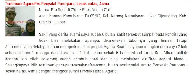 Obat Asma Herbal Alami Tanpa Efek Samping